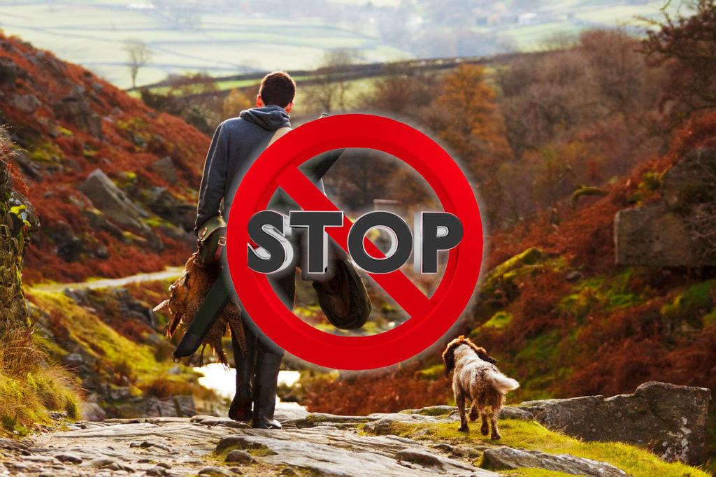 stop alla caccia in tempo di covid